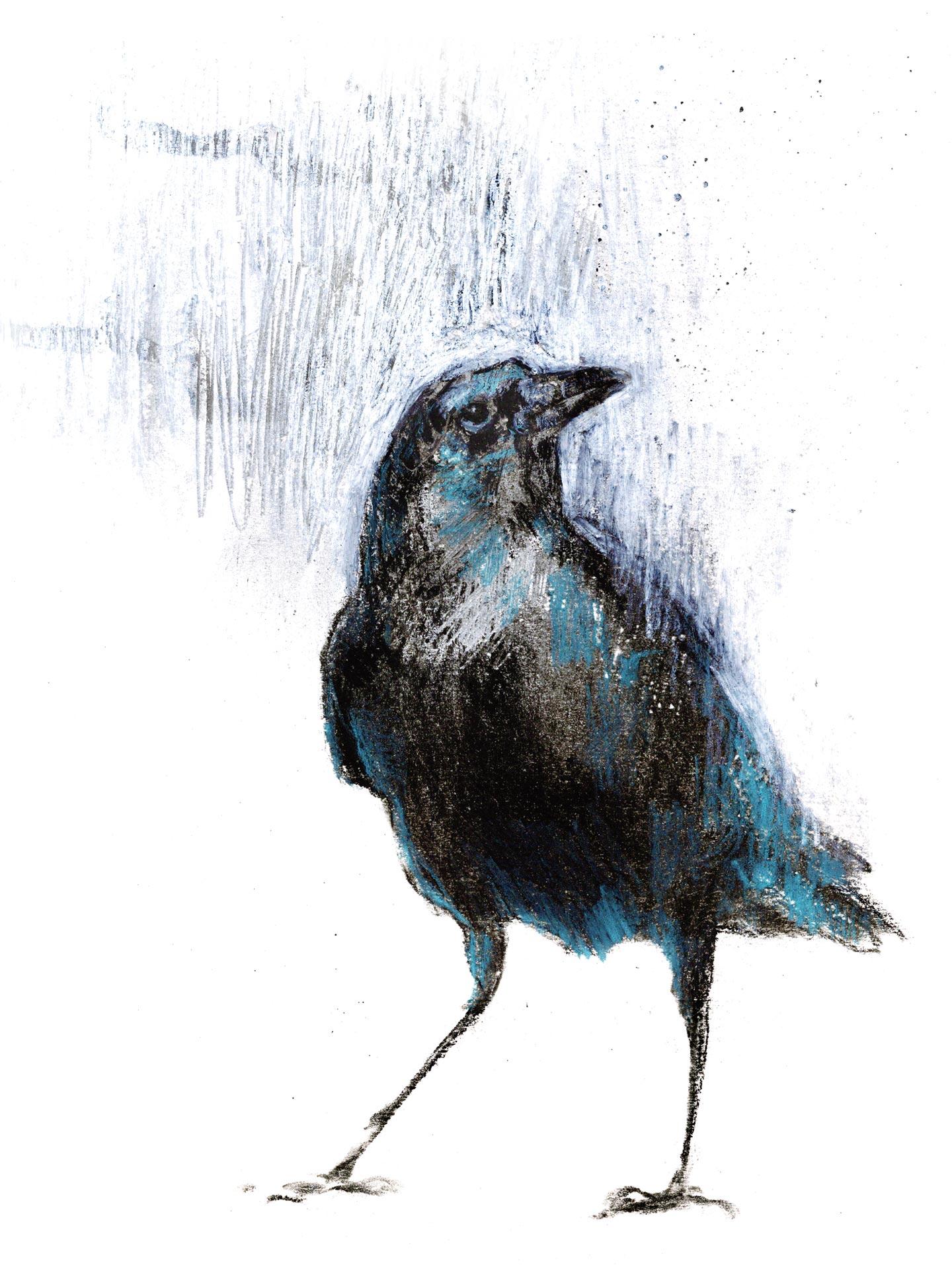 pensamiento-nuevos-cuervo