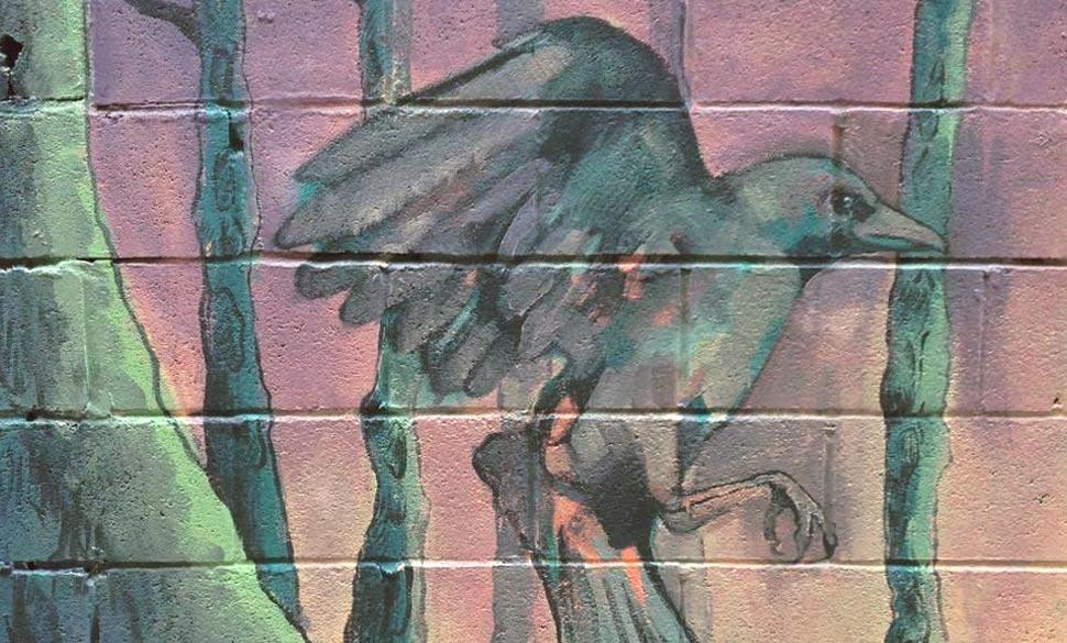 el-funeral-cuervo