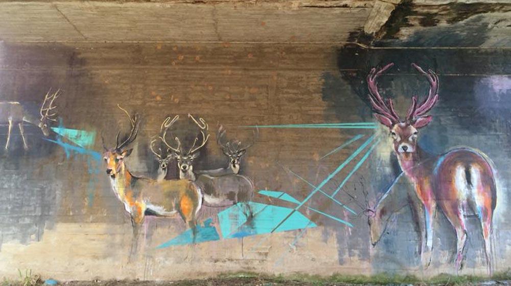 muro-ciervo