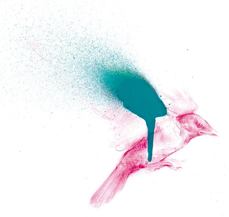 pajaro-rosa